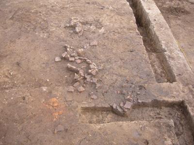 竪穴住居のカマドの焼けた土近くに甕(かめ)の破片がまとまって出土しています。