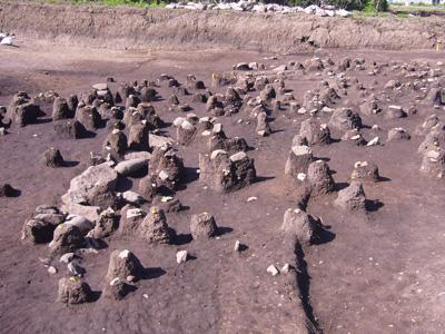 遺物の出土状況。土山の上に、出土した土器や石器が置いてあります。