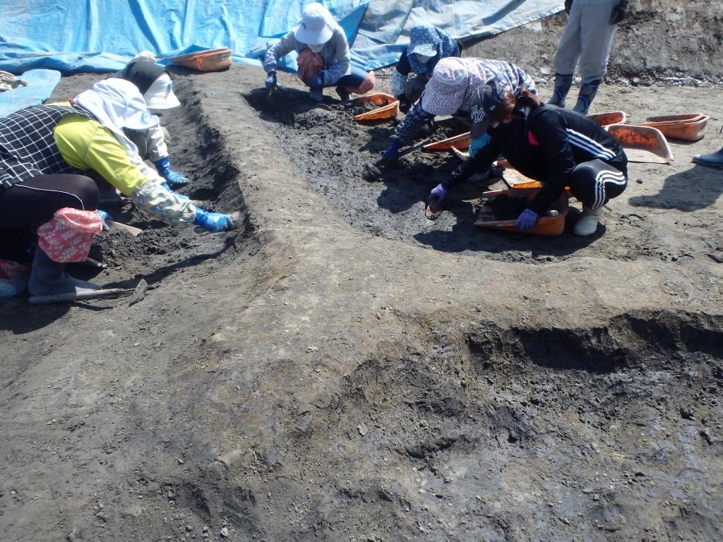 石川条里遺跡 2019年度発掘調査情報(1)