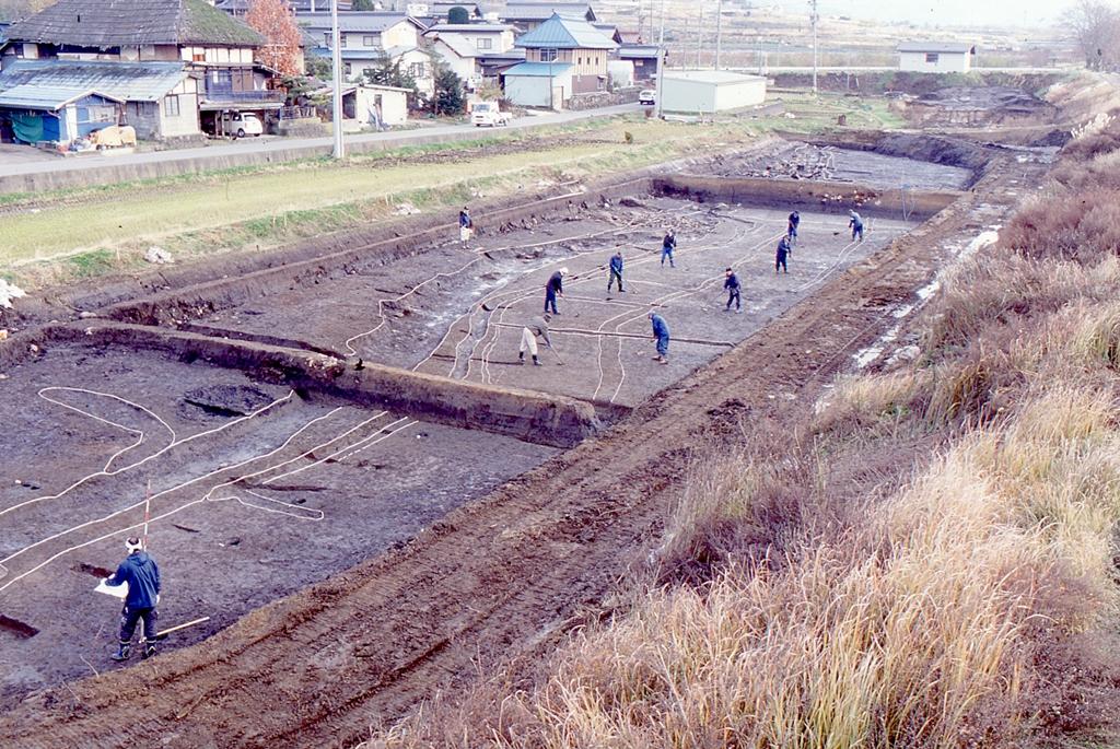柳沢遺跡 平成29年度調査情報(5)